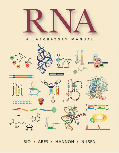 A Review Of The Methods For Processing High Throughput Rna Sequencing Data Cell Biology Notes Rna Sequencing Biology Notes