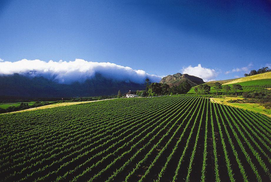 Top 10 Franschhoek Restaurants Provinces Of South Africa South