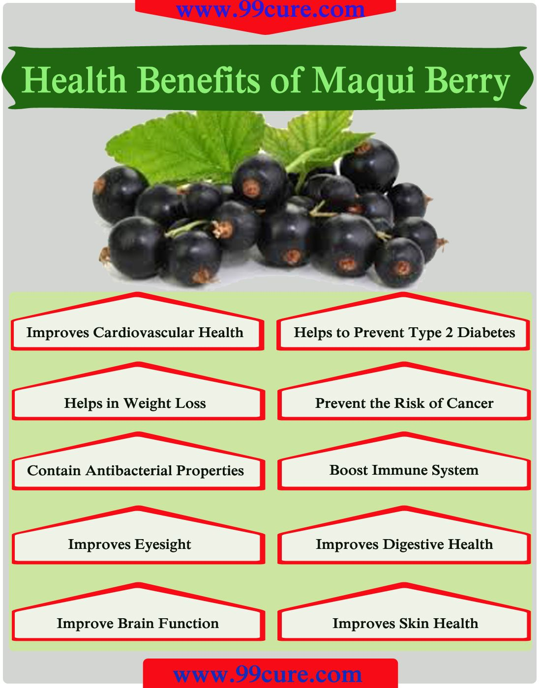 Understand India Supplements Food Medicine Digestive Health