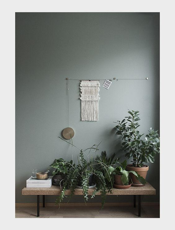Un mur coloré et des plantes d\'intérieur pour habiller le couloir d ...