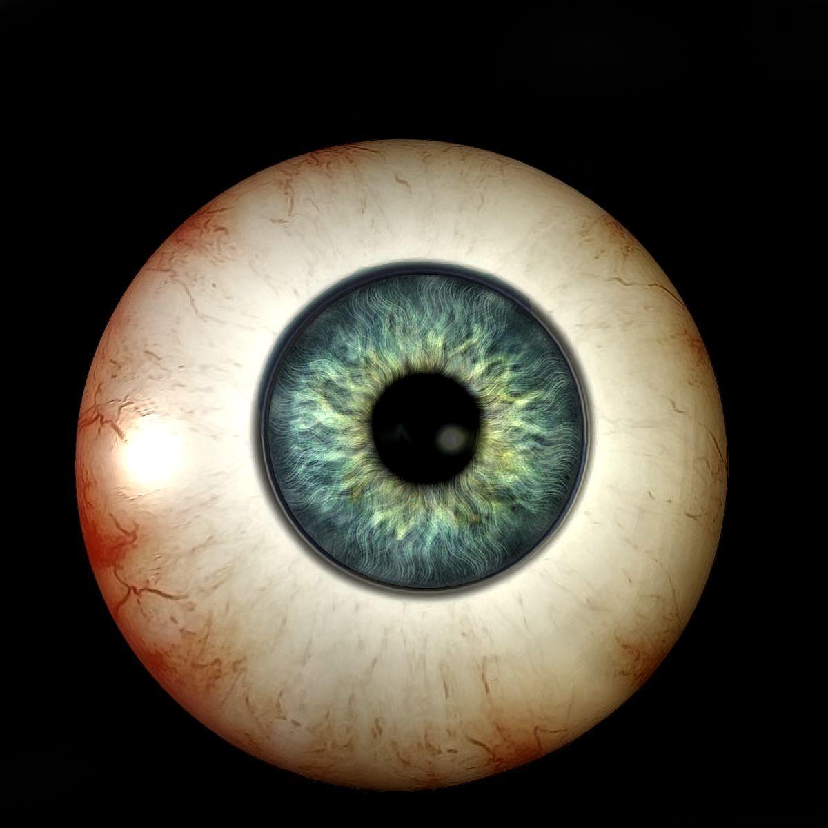 Eye Balls It S Just Eyeballs Creepy Eyeballs Staring At You Sideways Creepy Eyes Cow Eyes Eyeball Tattoo
