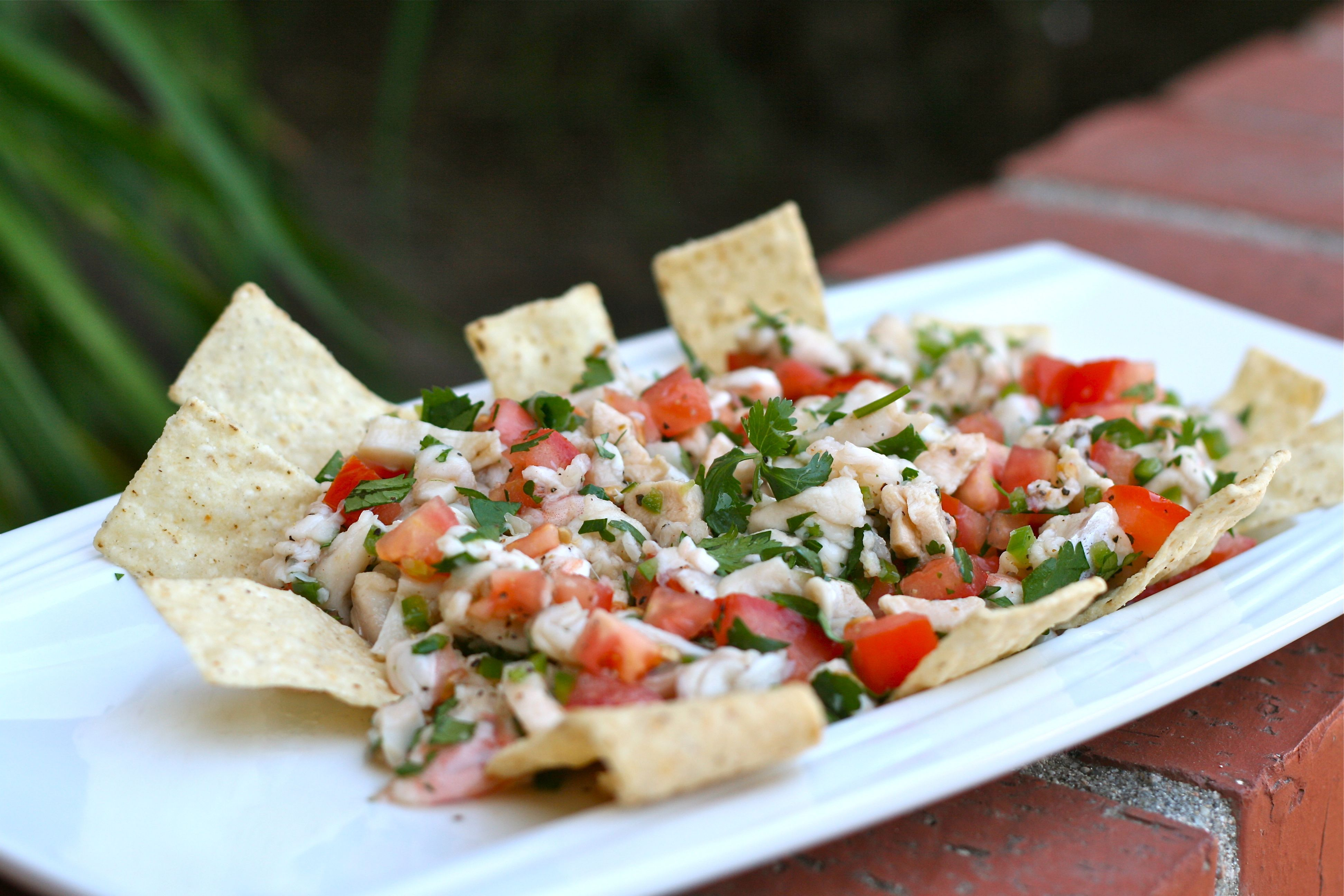 Ceviche For Your Pool Party - Betches Love This