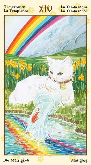 Free Daily Tarotscope -- Apr 30, 2015 -- Temperanc