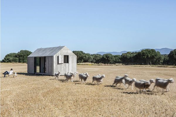 sheep-and-micro-house.jpg 600×400 Pixel