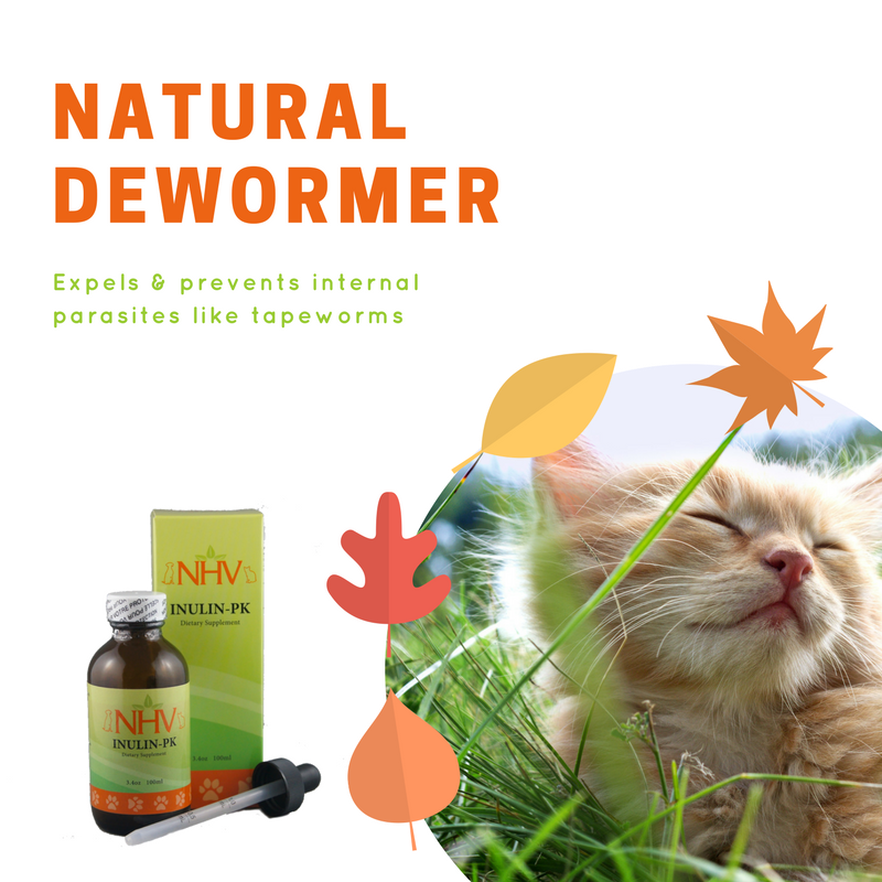 Inulin Pk For Cats Cat Care Tips Natural Pet Healthy Pets
