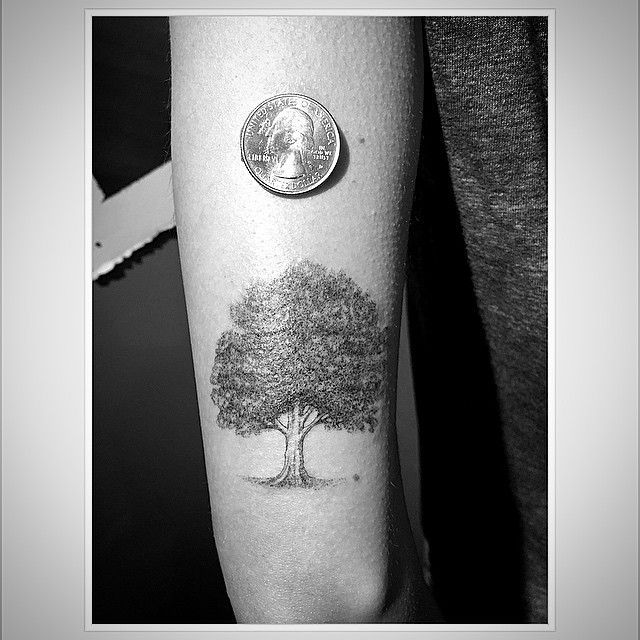 Oak Tree With Roots Tattoo: Grey And Black Oak Tree Tattoo On Left Bicep