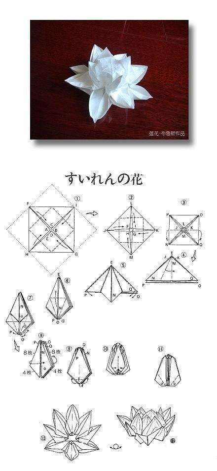 Origami lotus flower instructions crafts pinterest dessin g om trique fleurs de lotus et - Origami fleur de lotus ...