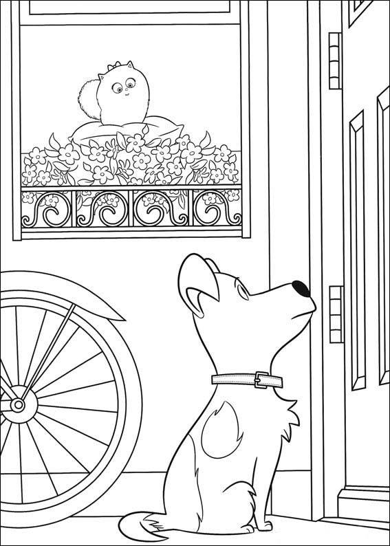 The Secret Life Of Pets Coloring Pages 20 Desenhos Para Colorir