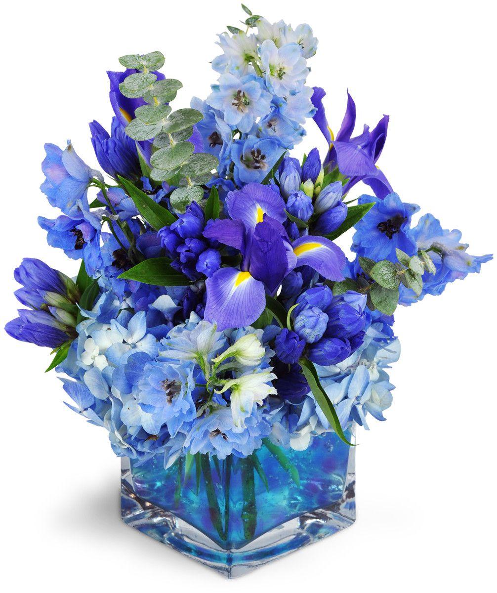 Paint The Sky Blue Flower Arrangements Flower Arrangements Blue Flowers