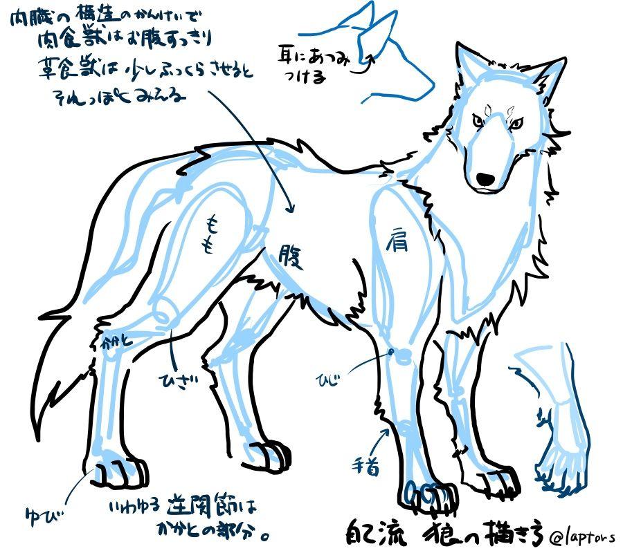 自己流狼の描き方 1 オオカミ イラスト狼 描き方動物の