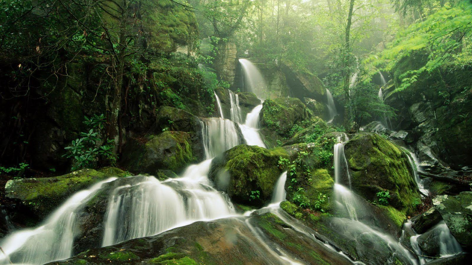 Nature Hd Wallpapers 1080p Waterfall Wallpaper Waterfall Beautiful Nature Wallpaper