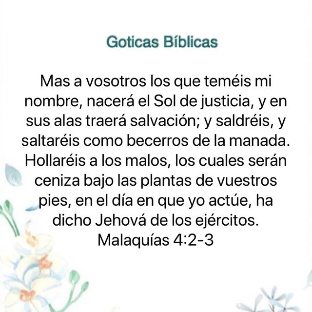 Pin De Myriam B En Goticas Biblicas 2 Mb En 2020 Sol De Justicia Biblia Reina Valera 1960 Malaquias