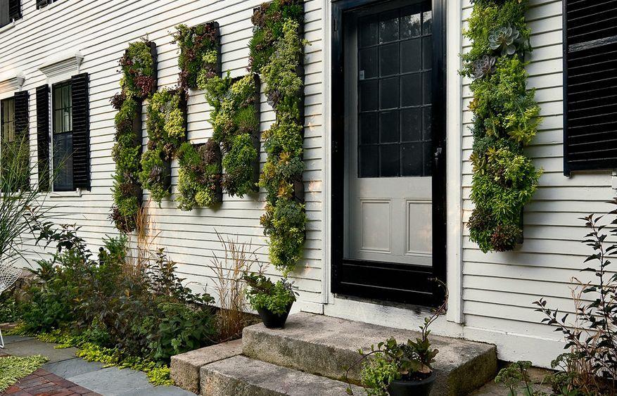 Outdoor House Facade Vertical Garden Exterior Wall Design