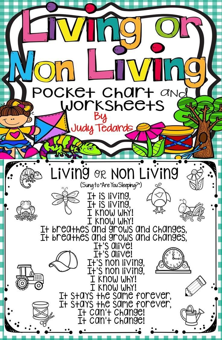 Kids Love Pocket Chart Activities And They Will Love This Living Or Non Living Poem Song Pocket Chart Activities Science Resources Kindergarten Anchor Charts [ 1128 x 736 Pixel ]