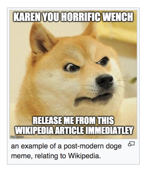 Pin By Toad On Miscellaneous Memes Doge Meme Doge
