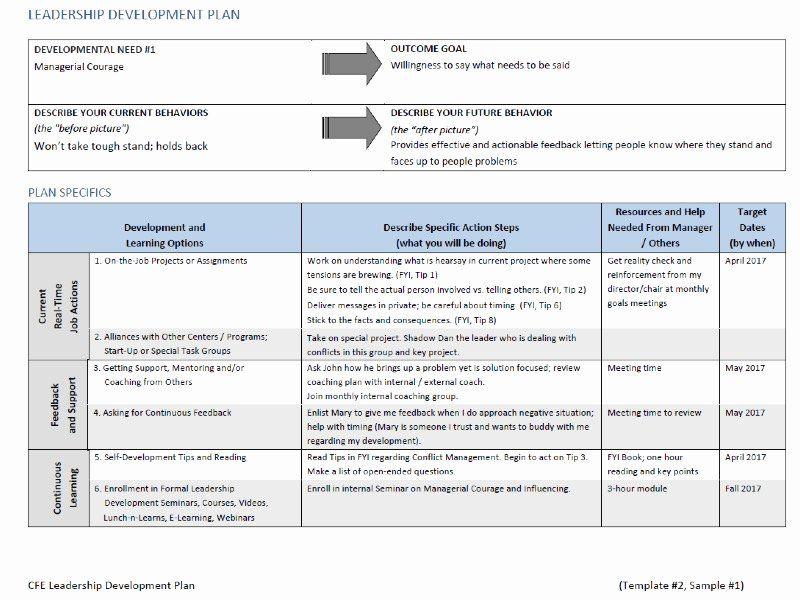 Individual Professional Development Plan Sample New Leadership Deve Personal Development Plan Template Leadership Development Personal Development Plan Example