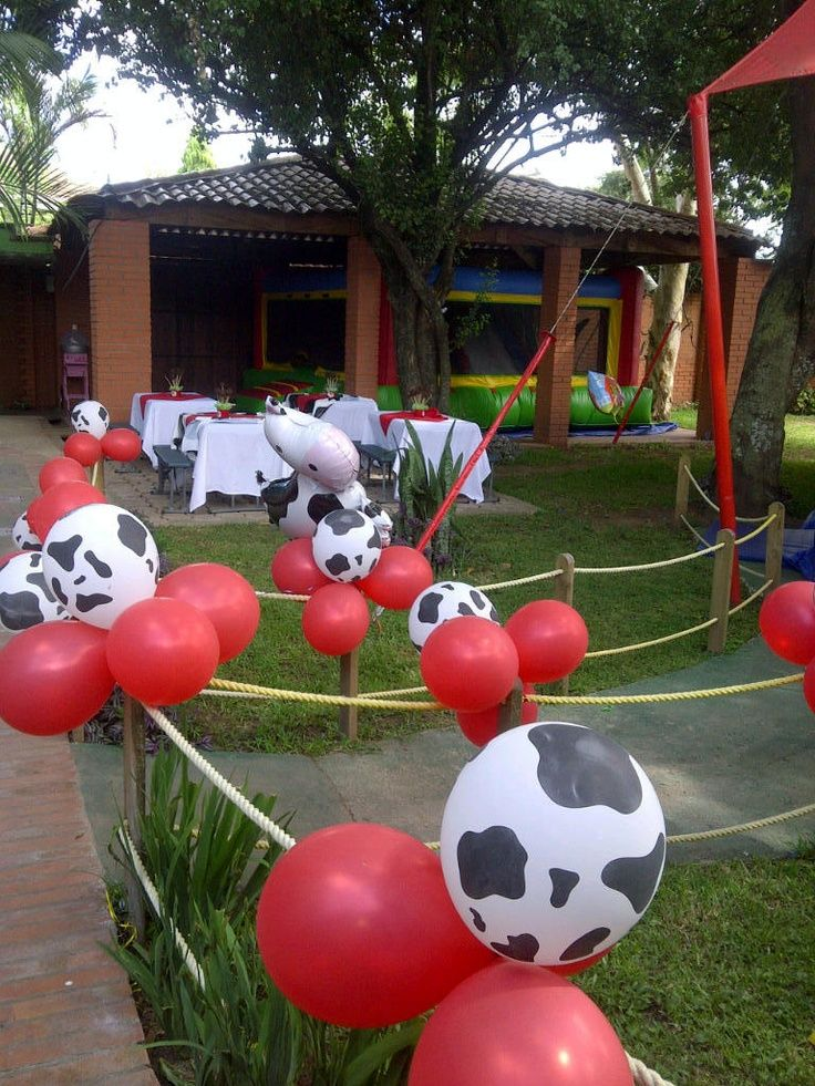 Cow Themed Birthday Party