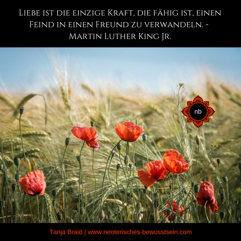 Liebe Martin Luther King