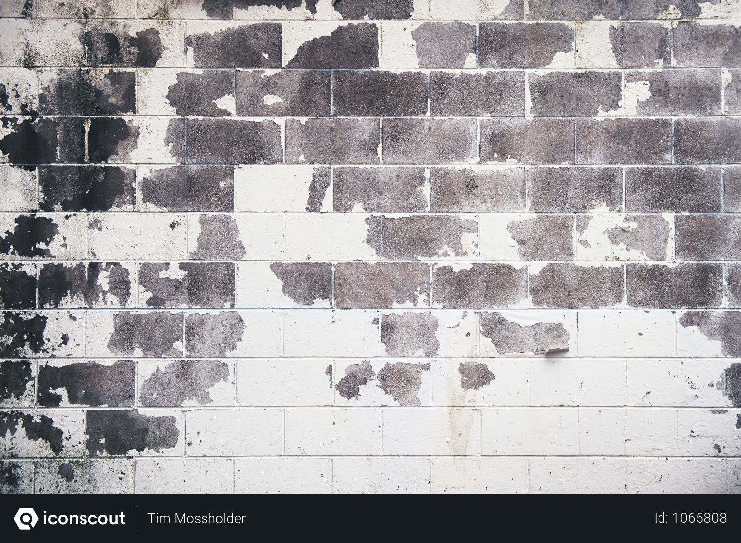 Free White And Gray Concrete Brick Wall Photo Download In Png Jpg Format Best Concrete Paint Painting Concrete Brick