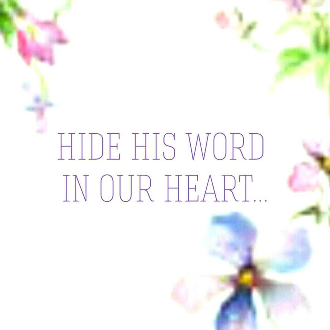Les feldick bible study daily online video bible study