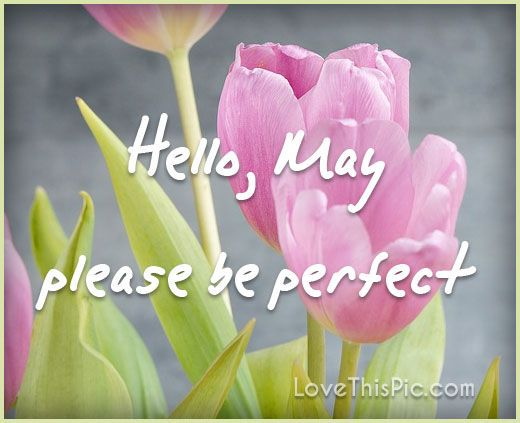 Welcome The Month Of May Beautiful Hello May Quotes May Month