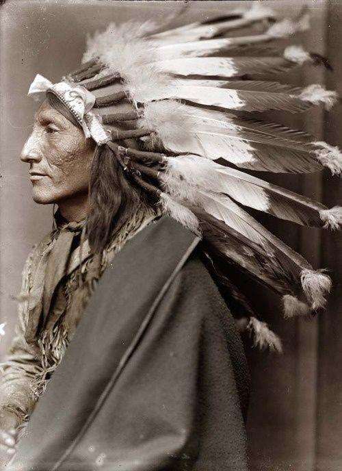 the Fabled White Buffalo co. >>>Bailey H. Robinson