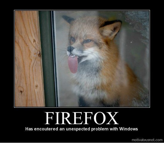 Image result for firefox demotivational poster toptenz.net