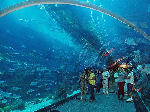 United Arab Emirates-Dubai-The Dubai Mall -world's ...