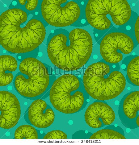 pattern with round leaves of water lilies. In the pond texture - stock vector