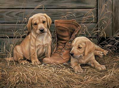 A593706656 Something Old Something New Yellow Lab Puppies Painting