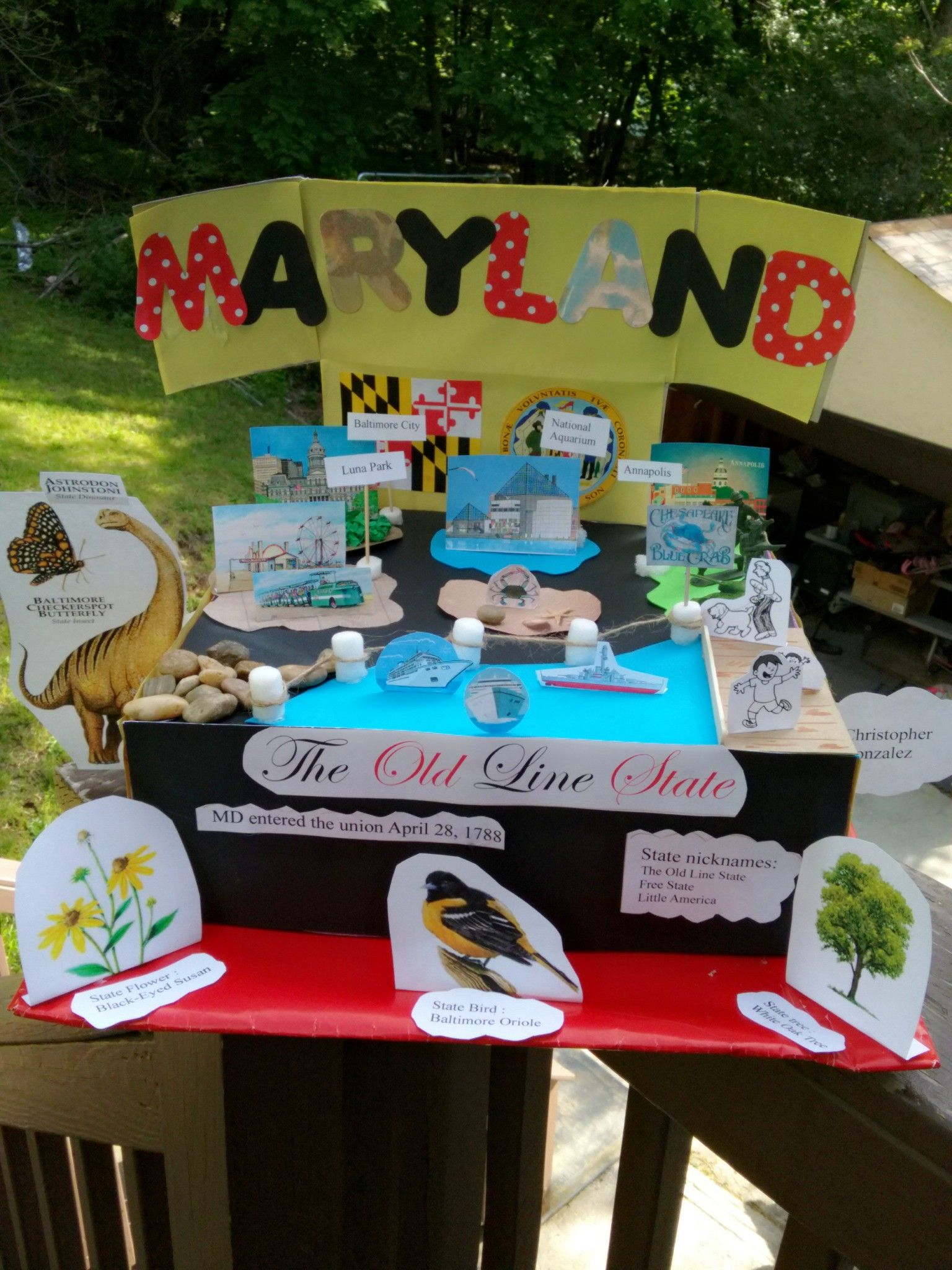 Pin by susana campos on state float ideas maryland pinterest school projects maryland project ideas diys ideas for projects bricolage do it yourself fai da te diy solutioingenieria Gallery