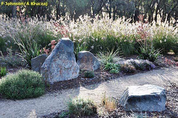 Garden Ideas Australian Native australian native garden inspiration - cloudy hill garden | garden