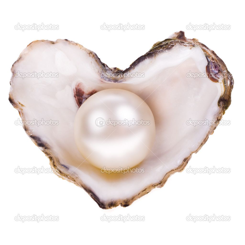 Big pearl in an oyster shell
