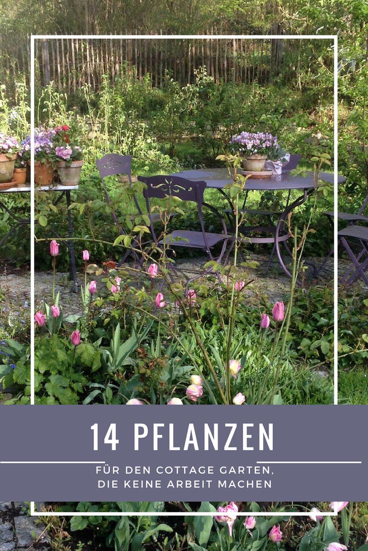14 Lieblinge Die Einen Cottage Garten Zaubern Ohne Arbeit Cottage Garten Pflegeleichter Garten Garten