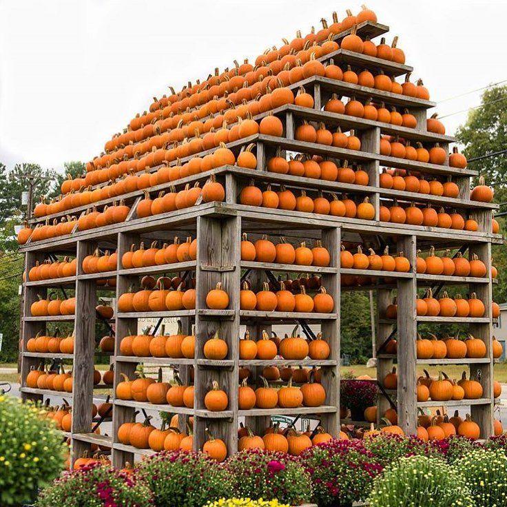 Dream house!  #CLscenery #autumn #pumpkin #regram @ajcollette7
