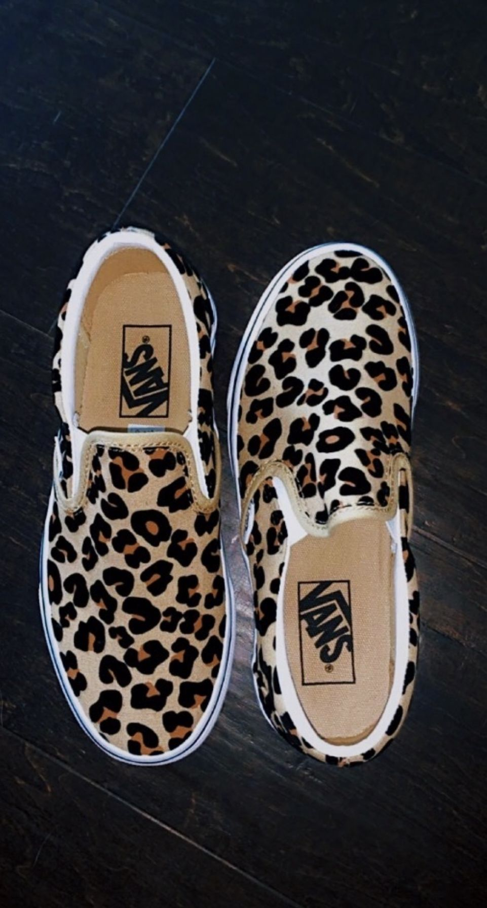 cheetah vans