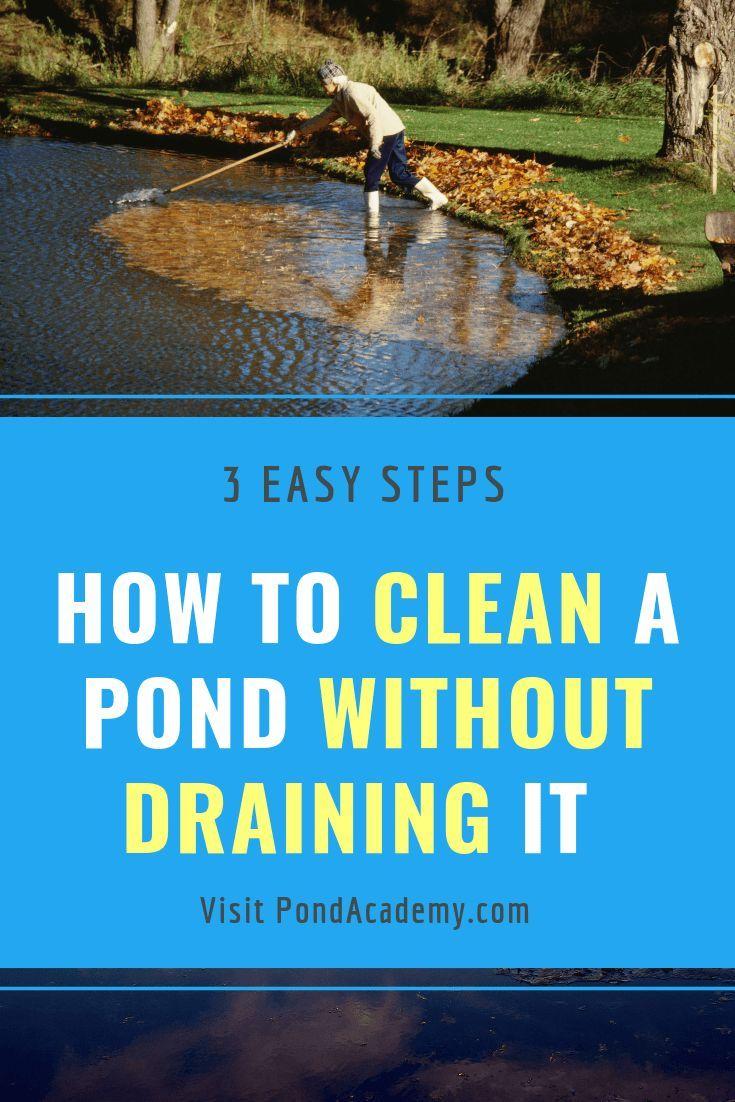 dd02f106e2dcfd6b69c60b3a6aa9c9ef - How To Get Rid Of Moss In A Farm Pond