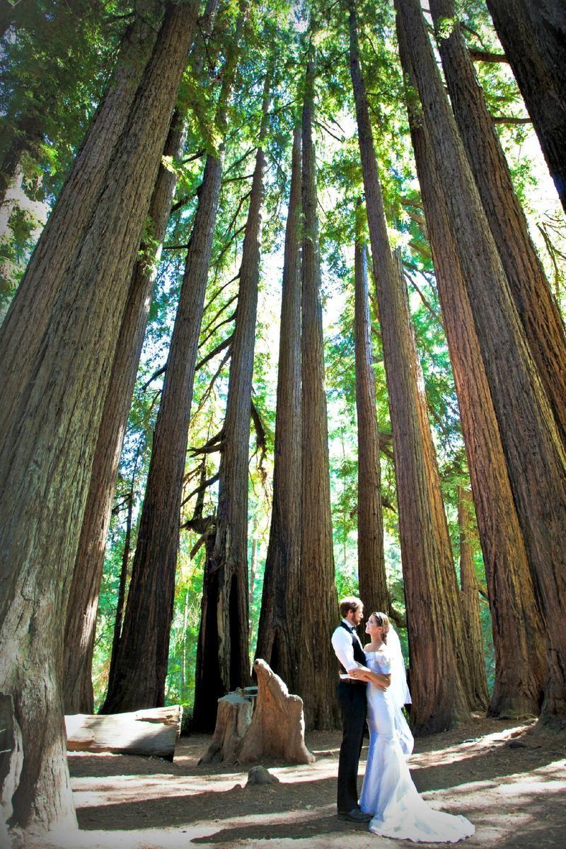 Northern California Wedding Venues   Roaring Camp Railroads Northern California Wedding Venue Up To 250