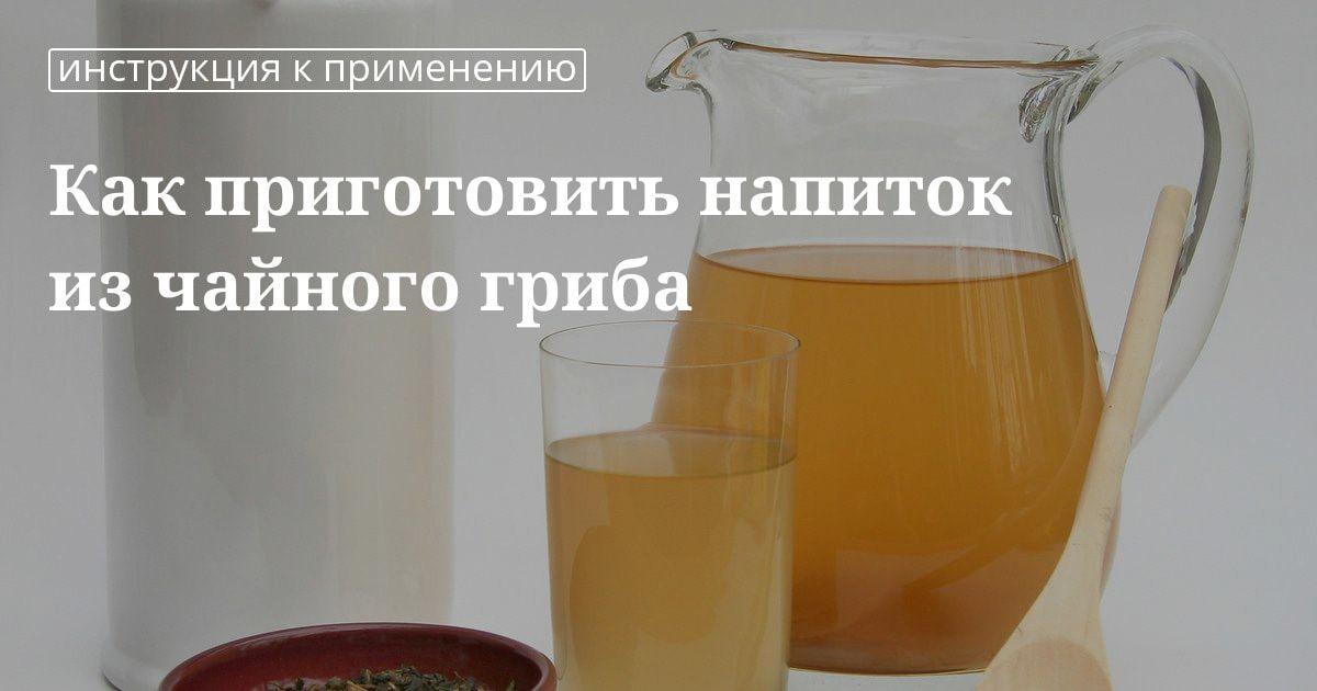как приготовить напиток из домашнего гриба