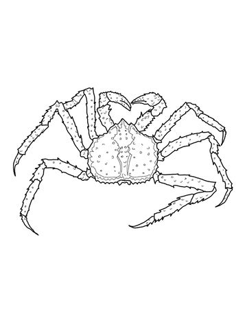 King Crab Coloring Page Free Printable Coloring Pages Coloring Pages Coloring Pages For Kids Coloring Pages For Boys
