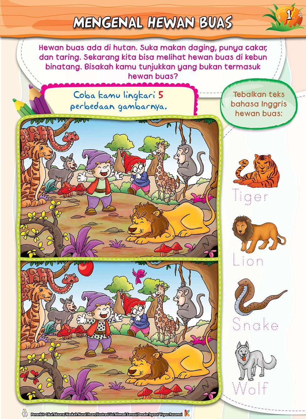 Buku Aktifitas Mencari Perbedaan Gambar Untuk Anak Tk Paud Buku Gambar Anak