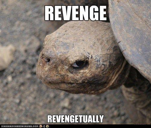 Revengetually! | Funny animal memes, Funny animals, Animal ...