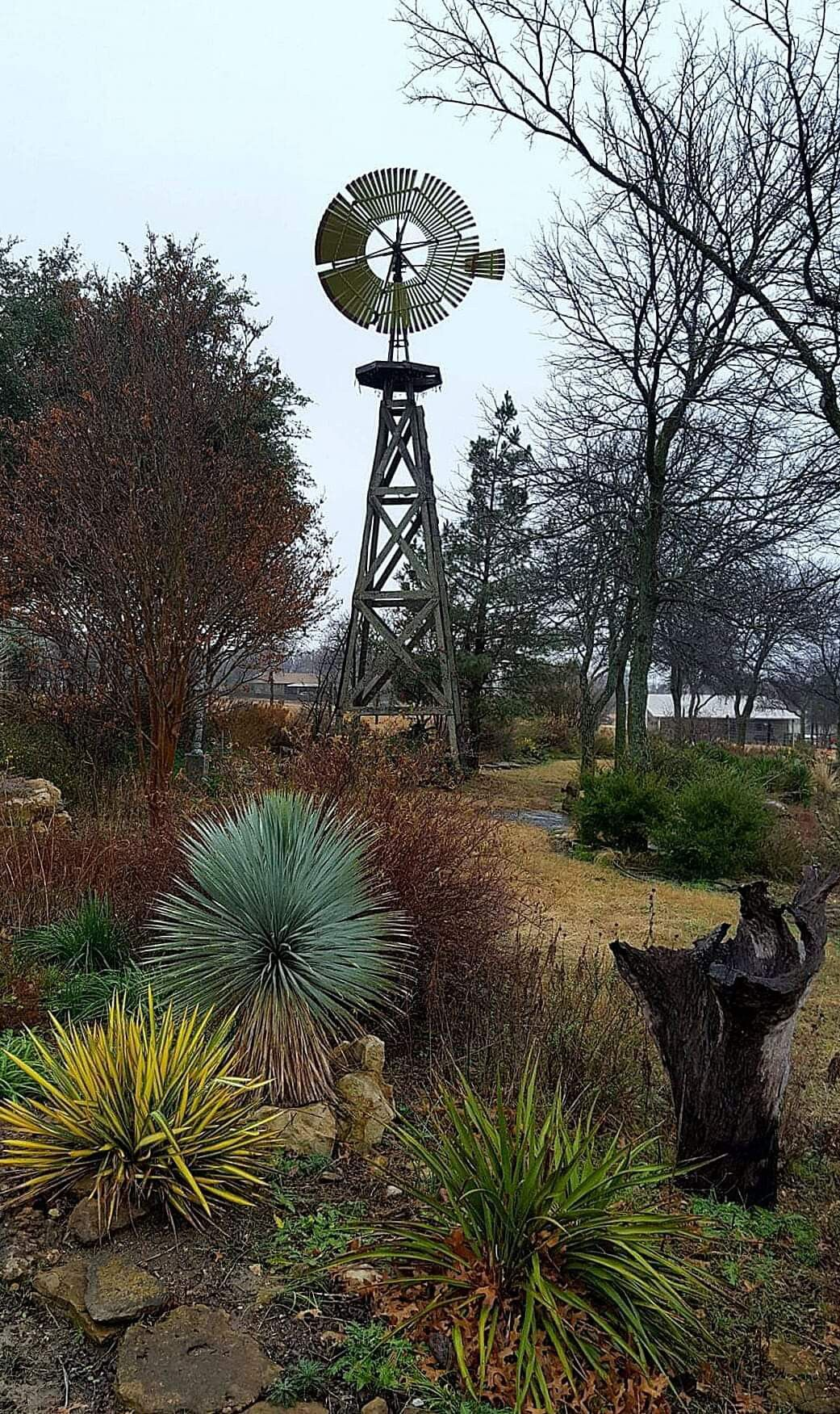 A wind pump in Decatur, Texas | Don Quixote's Nightmare in