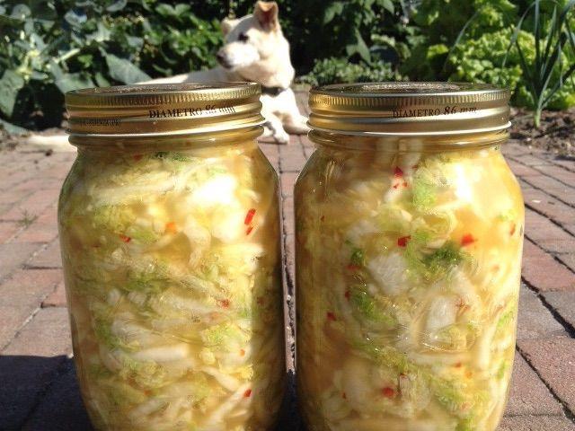 Kimchi zit boordevol goede bacteriën. Lees snel hoe je dit overheerlijke bijgerecht zelf kan maken!