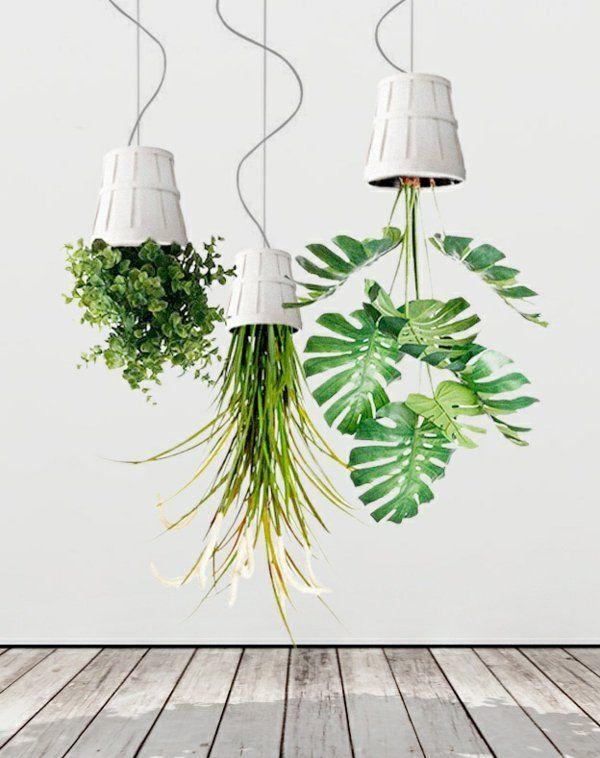 good einfache dekoration und mobel pflanze kopfuber anpflanzen 2 #1: hängende pflanzen kopfüber deko ideen zimmerpflanzen