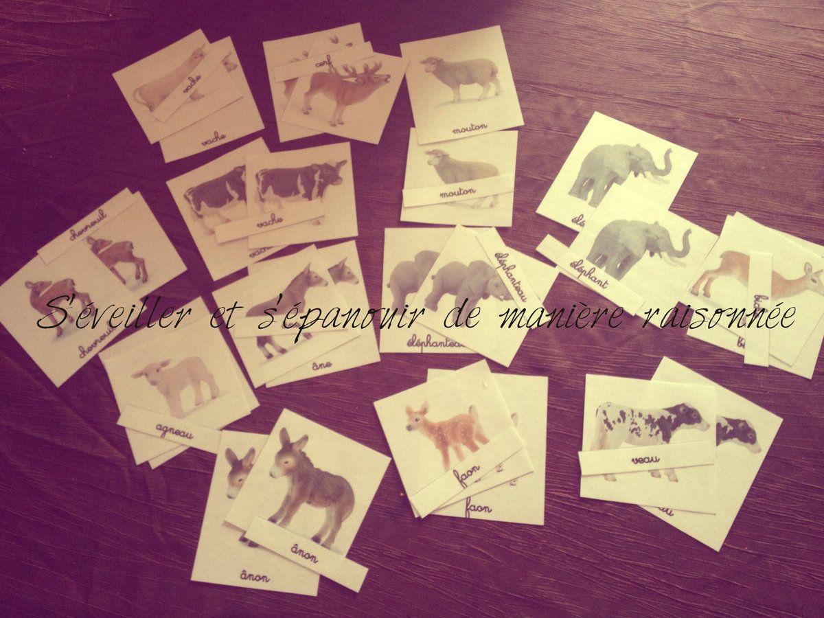 Depuis quelques mois nous achetons de temps en temps des figurines d 39 animaux de la marque - Je joints ou joins ...