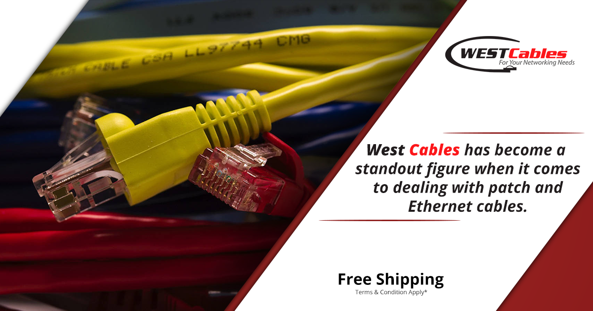 Our cables are vigilant, productive, extravagant and cost