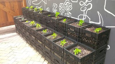 diy milk crate planters easy square foot vertical garden id put them on cement block wood shelves happy house and garden social site video - Milk Crate Garden