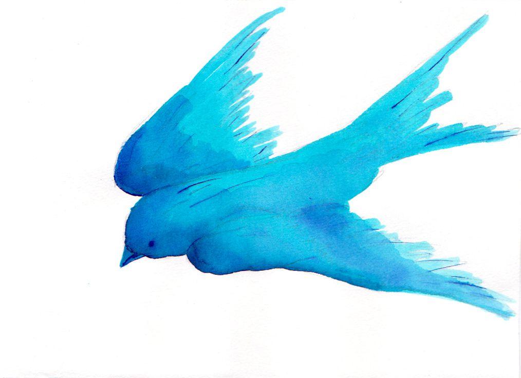 Blue Azul Blue Bluebird Tattoo Watercolor Bird Tattoo Watercolor Bird