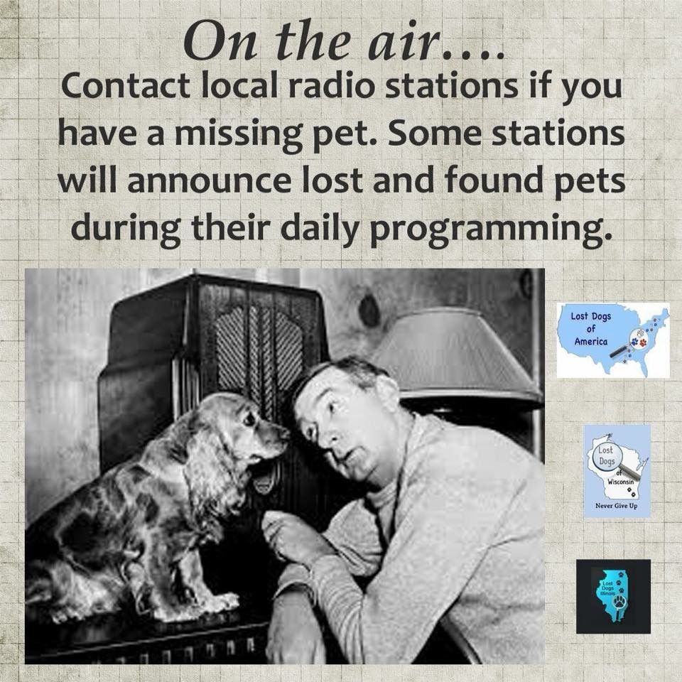 Remember That Not Everyone Is On Facebook Or Has A Computer Or Smartphone Use Traditional Media To Generate Sightings Losing A Dog Losing A Pet Radio Station